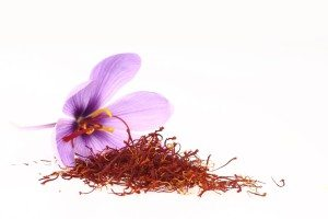Safran – et av verdens aller mest kostbare krydder.