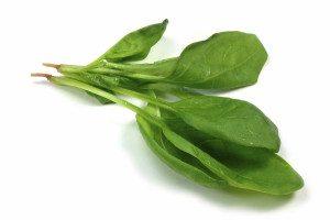 Spinat er en supergrønnsak med høyt innhold av mange vitaminer og mye kostfiber.
