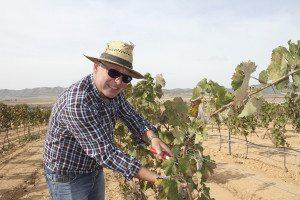 Harald Schalde elsker å gå rundt på vinmarkene med saksa.